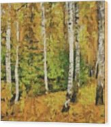 Birches And Spruces Wood Print