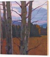 Birches At Twilight Wood Print