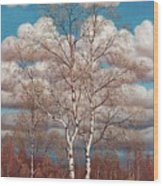 Birches In The Spring Wood Print