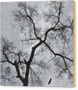 Bird And Tree Wood Print
