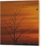 Bird At Play Wood Print