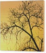 Bird At Sunset Wood Print