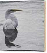Bird Bath 4619 Wood Print