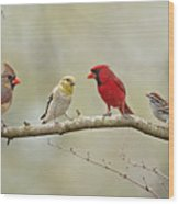 Bird Congregation Wood Print