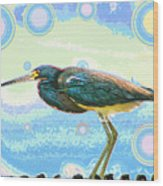 Bird Contemplates The Cosmos Wood Print by Wendy J St Christopher