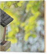 Bird Feeder Wood Print