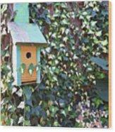 Bird Feeder In Ivy Wood Print