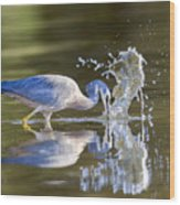 Bird Fishing In Lake Wood Print