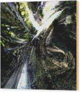 Bird Flight With Olive Branch Wood Print