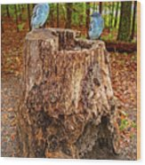 Bird Gossip Wood Print