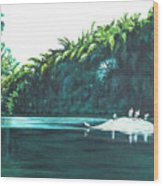 Bird Haven Wood Print