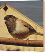 Bird House . 40d11078 Wood Print