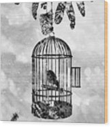 Bird In A Cage-black Wood Print