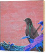 Bird In Abstract Wood Print