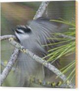 Bird In Action Wood Print