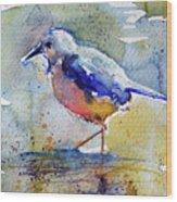 Bird In Lake Wood Print