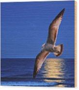 Bird In Moonlight Wood Print