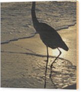 Bird In Paradise Wood Print