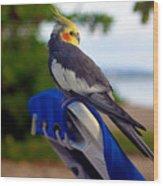 Bird In Paradise Wood Print