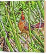 Bird In The Brush H D R Wood Print