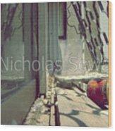 Bird In The Israel Window Wood Print