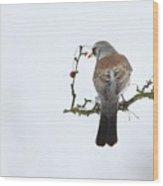 Bird In The Sky Wood Print