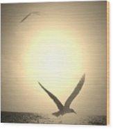 Bird In The Sunset Wood Print