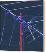 Bird Kite At Midnight Wood Print