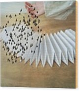 Bird Migration 2 Wood Print