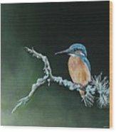 Bird N.10 Wood Print