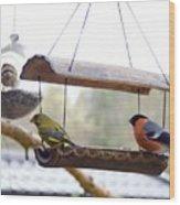 Bird Of Europe.norway Wood Print