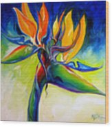 Bird Of Paradise 24 Wood Print
