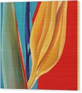Bird Of Paradise2 Wood Print
