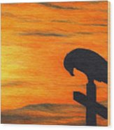 Bird Of Pray Wood Print