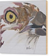 Bird Of Prey  Osprey Wood Print