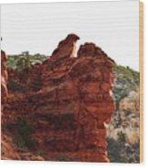 Bird Of Rock Wood Print