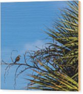 Bird On A Palm Branch Wood Print