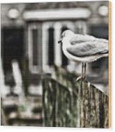 Bird On A Pole Wood Print