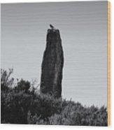 Bird On A Standing Stone Wood Print
