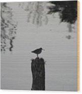 Bird On A Stump Wood Print