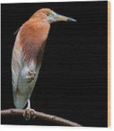 Bird On Black Wood Print