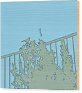 Bird On Fence Aqua II Wood Print