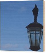 Bird On Lamplight Wood Print
