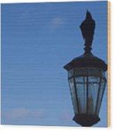 Bird On Lamplight Wood Print