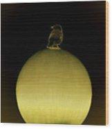 Bird On Light Wood Print