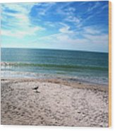 Bird On The Beach Wood Print