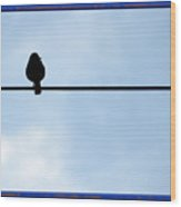 Bird On The Wire Wood Print