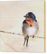 Bird On Wire Wood Print