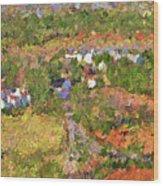 Bird Over Santa Rosa, Nbr 1k Wood Print