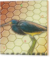 Bird Ponders The Disappearing Bees And Several Biological Markers Left In The Hive Wood Print by Wendy J St Christopher
